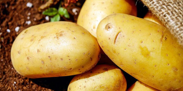 La dieta de la patata