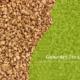 proteína de guisante texturizado